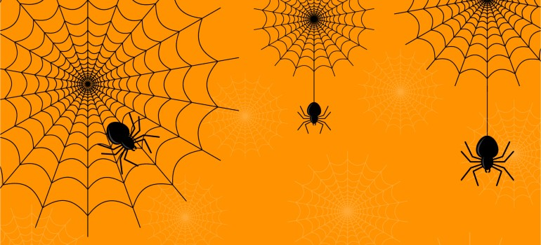 halloween spiders and pests