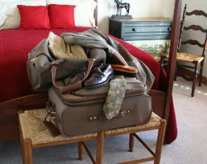 inspect luggage for bed bugs